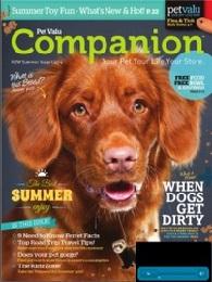 companion 17