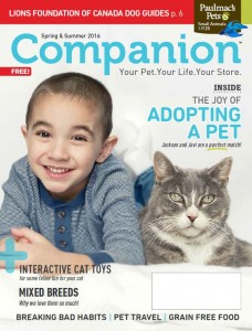 PM SpringSummer Companion 2016