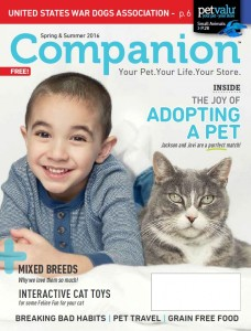 SpringSummer Companion 2016