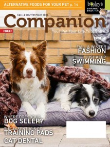 BO FallWinter Companion 2016