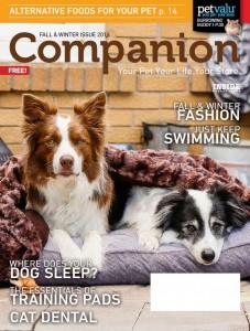 PV FallWinter Companion 2016