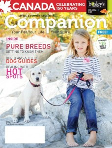 BOS Companion 2017