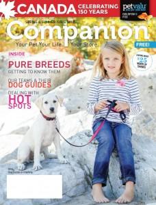 PV Companion 2017