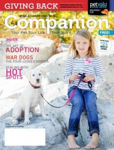 Companion 2017