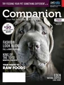 PV Companion