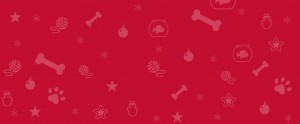 Red pet and winter icon pattern