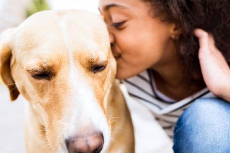 Pet valu pet store pet food treats and supplies your pet your story solutioingenieria Images