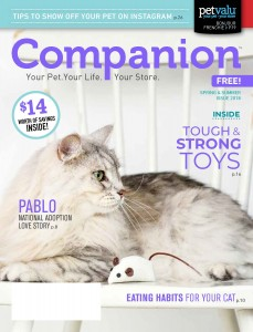 18-3867 Companion_Spring Summer_PVCI_LR_Page_01
