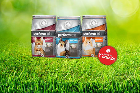 Performatrin Cat Food