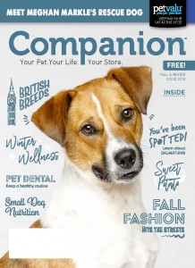 18-3994 Companion_Fall Winter Issue_PVI LR_Page_01