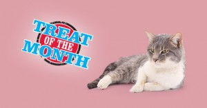 Treat of the Month &#8211; 30% Off<br /> Fruitables Wildly Natural Cat Treats