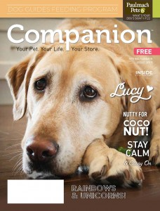 19-4293  Companion_SS Issue_PM lr_Page_01